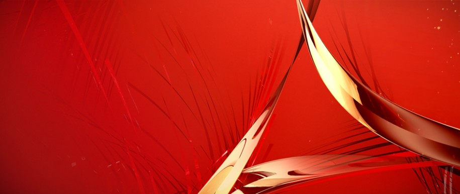 Design - Adobe Acrobat XI