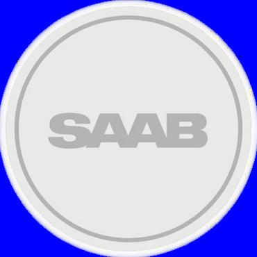 NEVS_Logo