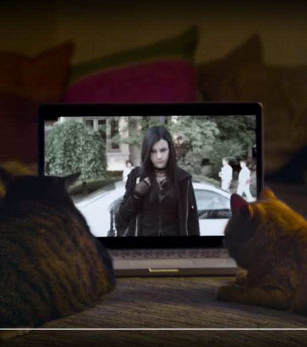"""""""Gothic Cat"""": ADC lässt Katzen Kreation bewerten"""