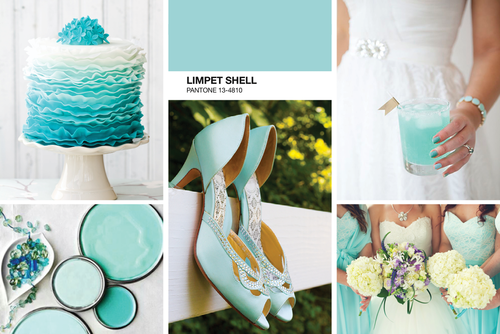 limpet-Shell-Mood-Board
