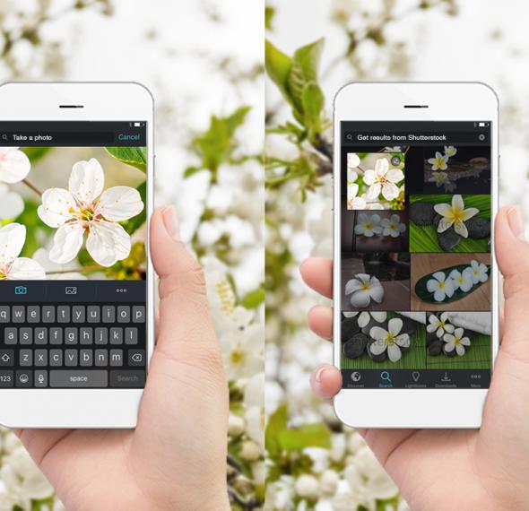 Shutterstock-Mobile-ReverseV2