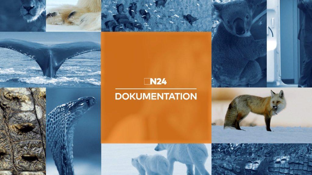 n24-dokugrid Sender-Design