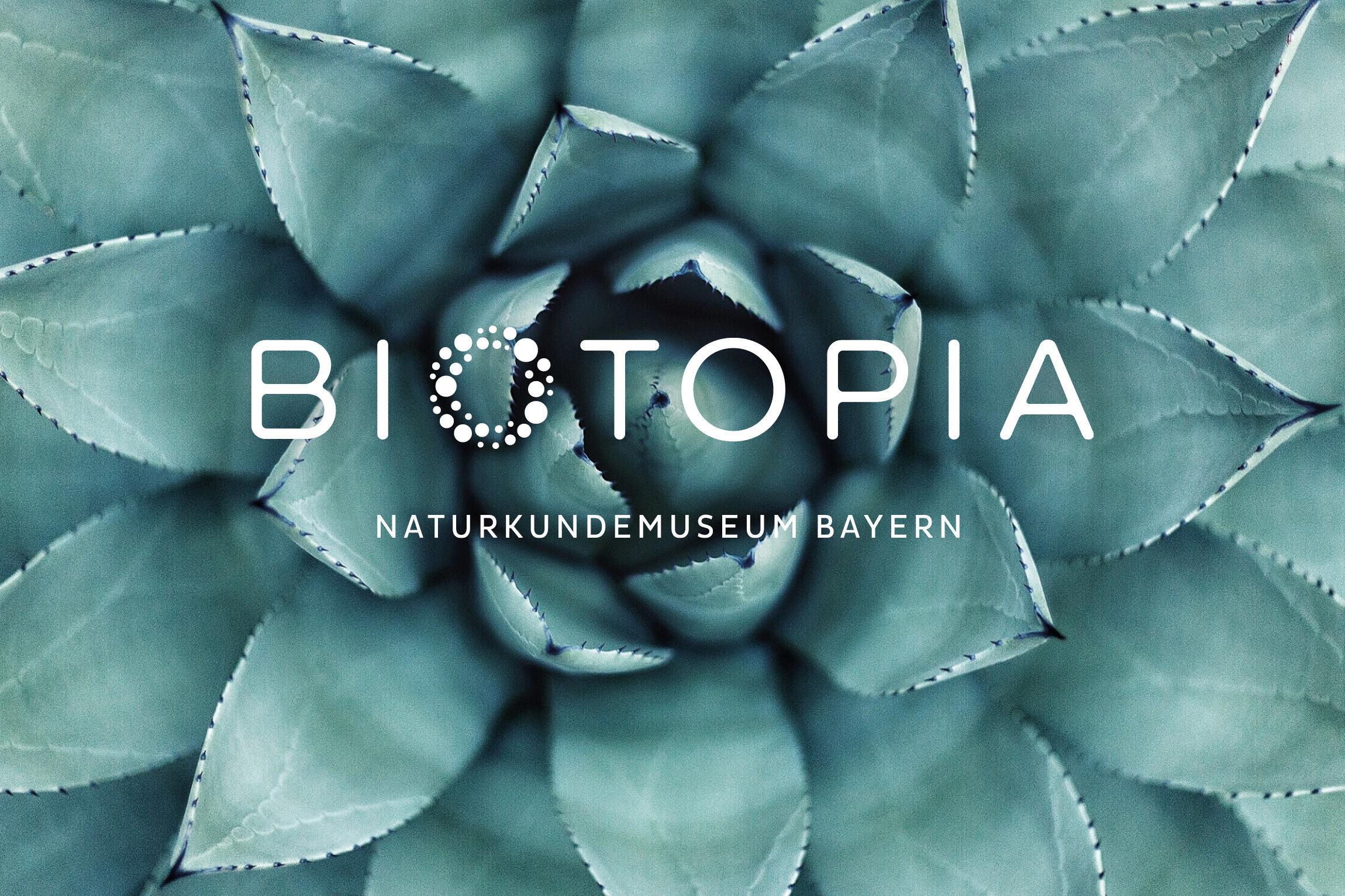 biotopia-museum-erscheinungsbild-brand-story-01.jpg