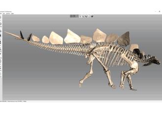 Stegosaurus 3D-Modell