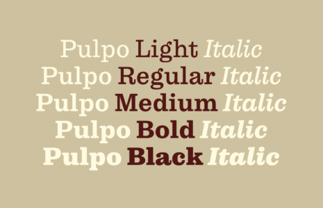 Pulpo_Weights