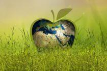 Nachhaltiges Design